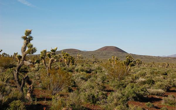 Mojave Desert - April 2010