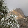 Yosemite National Park - December 2008 :