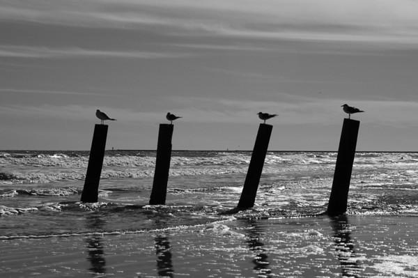 Surfside Beach - December 2007